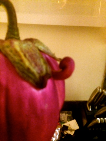 Is that a locally grown eggplant you have there or are you just pleased to see me?