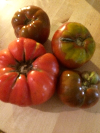 Angry tomatoes, I'll make short work of those...